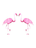 Poster: Flamingo, by Discontinued products
