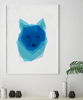 Poster: Fox, by Discontinued products