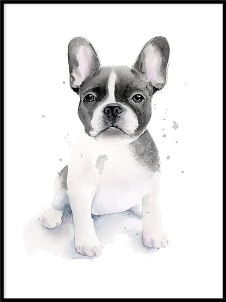 Poster: Frenchie, by Cora konst & illustration