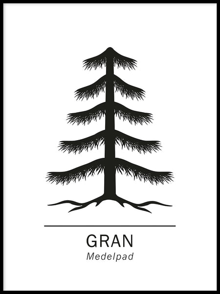 Poster: Spruce, by Paperago