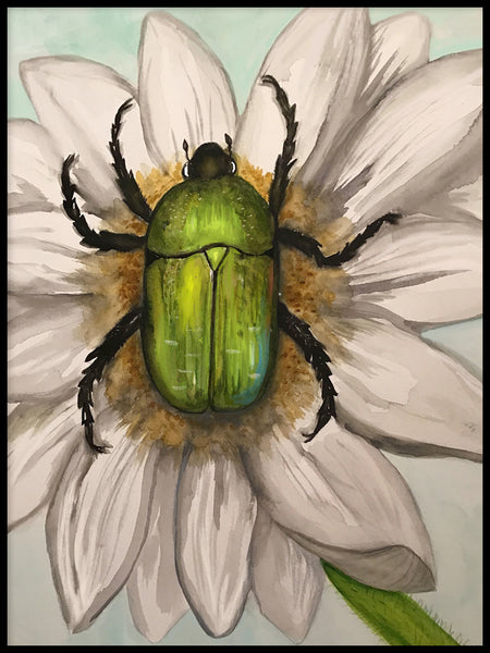 Poster: Bug in flower, by Lindblom of Sweden