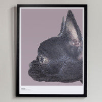 Poster: Ingo, by Discontinued products