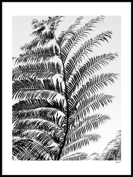 Poster: Iriomote leaf, by Caro-lines