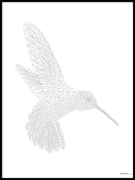 Poster: Hummingbird, by Jenny Findahl / Snowtrail Design