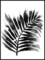 Poster: Leaf, black, by Sofie Rolfsdotter