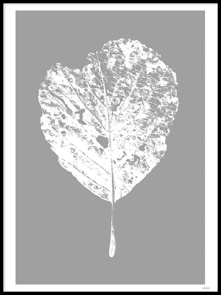 Poster: Leaf, by Discontinued products