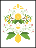 Poster: Lemon Gourd, by Discontinued products