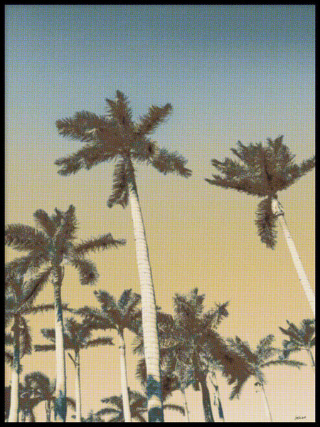 Poster: Palms and clear skies, by Caro-lines