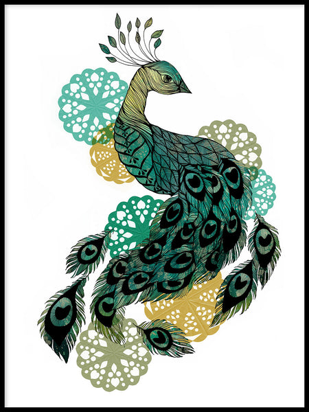 Poster: Peacock, by Sofie Rolfsdotter