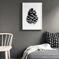 Poster: Pine Cone II, by Discontinued products