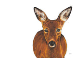 Poster: Roe Deer, by Stefanie Jegerings