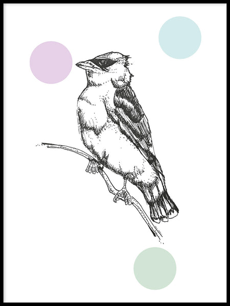 Poster: Waxwing, by Jessica Ahrling