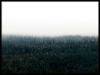 Poster: Forests in fog I, by EMELIEmaria