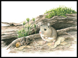Poster: Wood mouse, by Lisa Hult Sandgren