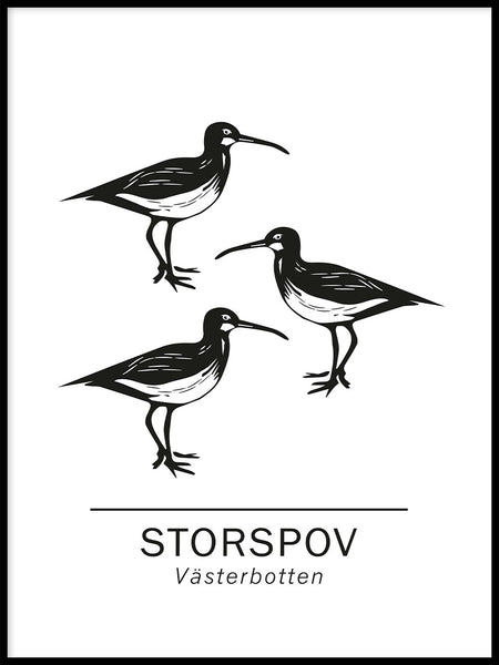 Poster: Storspov the official animals of västerbotten, Sweden., by Paperago
