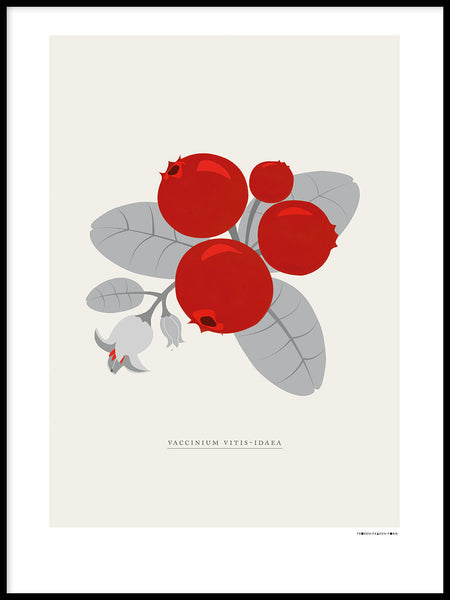 Poster: Swedish berries, lingonberries, by Fröken Fräken Form