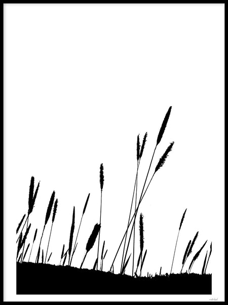 Poster: Timothy Grass, by Discontinued products