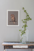 Poster: Owl, by Plurr - from skärgården with love