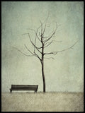 Poster: Under the cherry tree, Winter, by Majali Design & Illustration