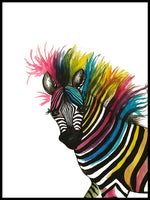 Poster: Zebra in watercolor, by Lindblom of Sweden