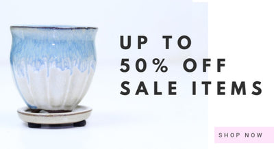 Up to 50% Off Sale Items!