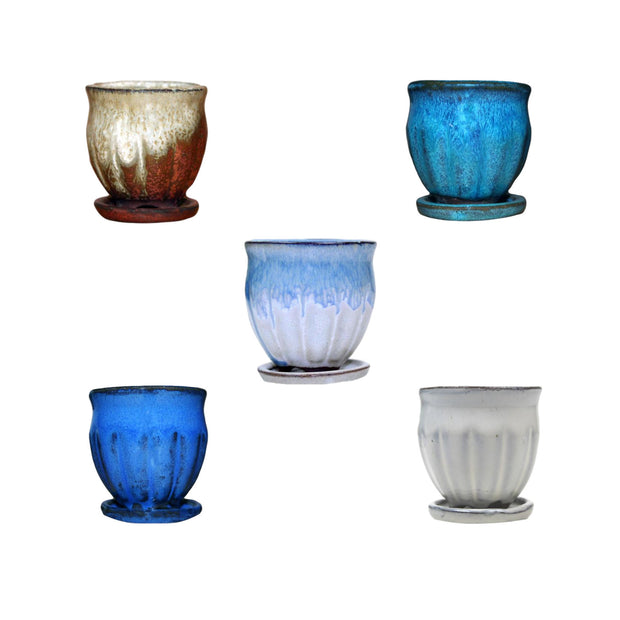 "2"" Amphora Vase Combo - All Colors (5 total pots)"