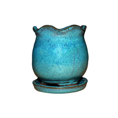 "3"" Teal Jade Ceramic Succulent Pot - Blooming Tulip"