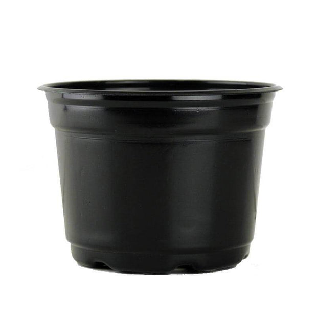 "5"" Black Flower Pot"
