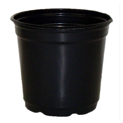 "5"" Taller Gloss Black Flower Pot"
