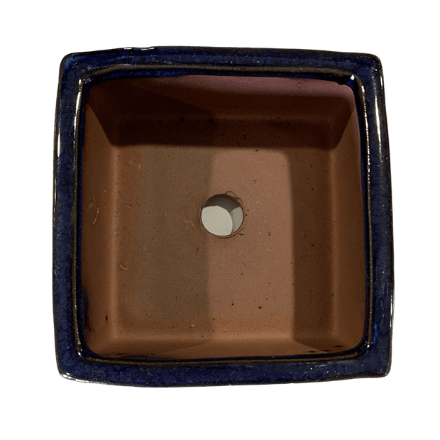 "4"" Cobalt Blue Over Cream Square Ceramic Succulent Pot"