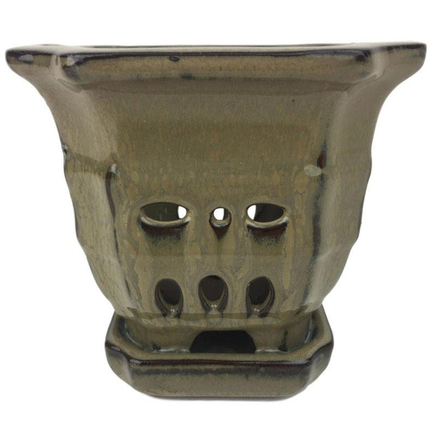"4.5"" Moss Sculpted Square Ceramic Orchid Pot"