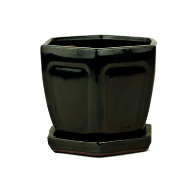 "5"" Solid Black Onyx Hexagon Ceramic Orchid Pot"