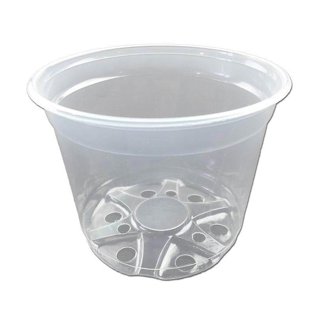 "6"" Crystal Clear Orchid Pot"