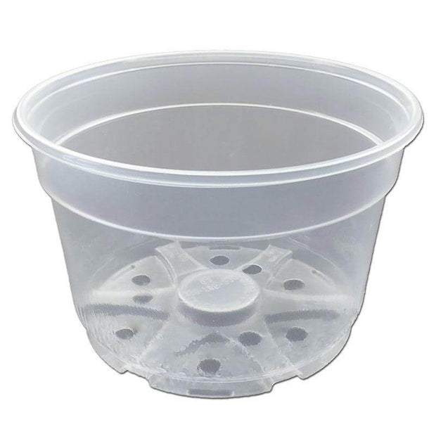 "8"" Crystal Clear Orchid Pot"