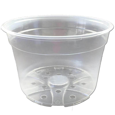 "9"" Crystal Clear Orchid Pot"