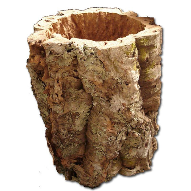 8-12 inch Virgin Cork Trunk Tube