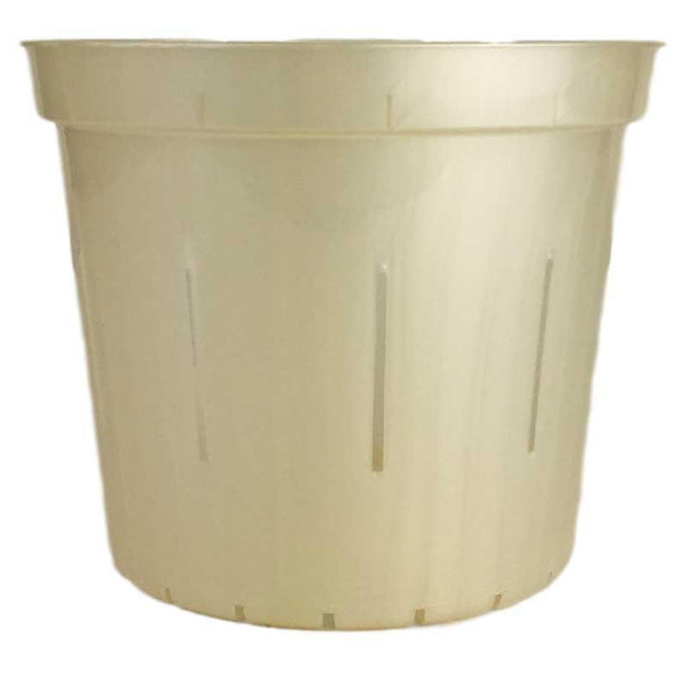 Golden Creme Slotted Violet Pot - Slot-Pots