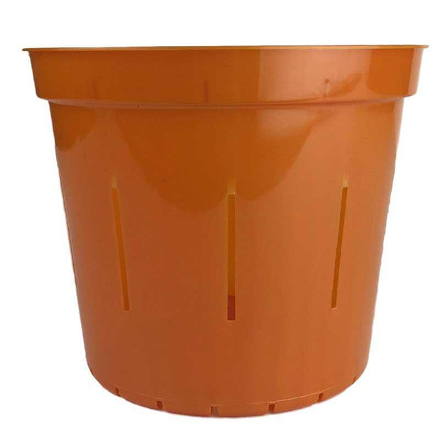 Copper Amber Slotted Violet Pot - 6 Inch - Slot-Pots