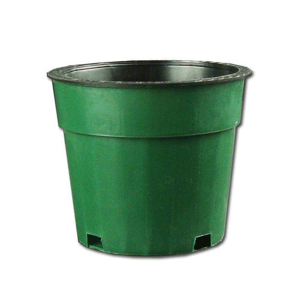"3.75"" Green Oxygen Core Dual Orchid Pot"