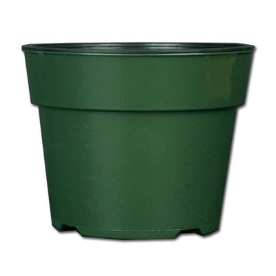 "6.5"" Green Oxygen Core Dual Orchid Pot"