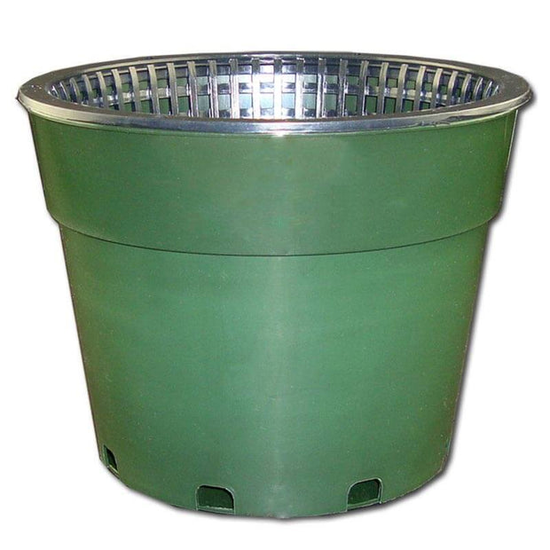 "8"" Green Oxygen Core Dual Orchid Pot"