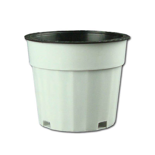 "3.75"" White Oxygen Core Dual Orchid Pot"