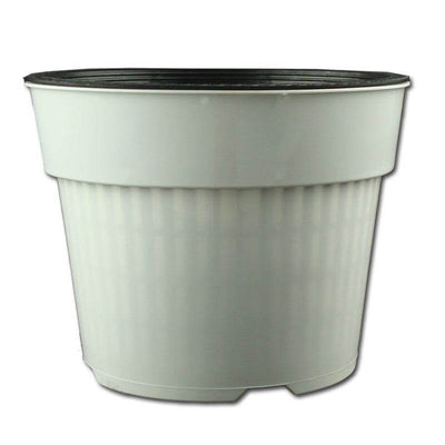 "6.5"" White Oxygen Core Dual Orchid Pot"