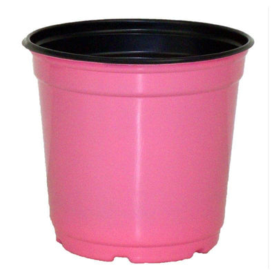 "5"" Taller Gloss Pink Flower Pot"