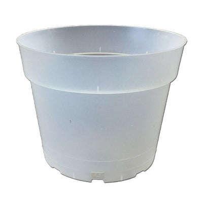 "6.5"" Rigid Clear Orchid Pot"