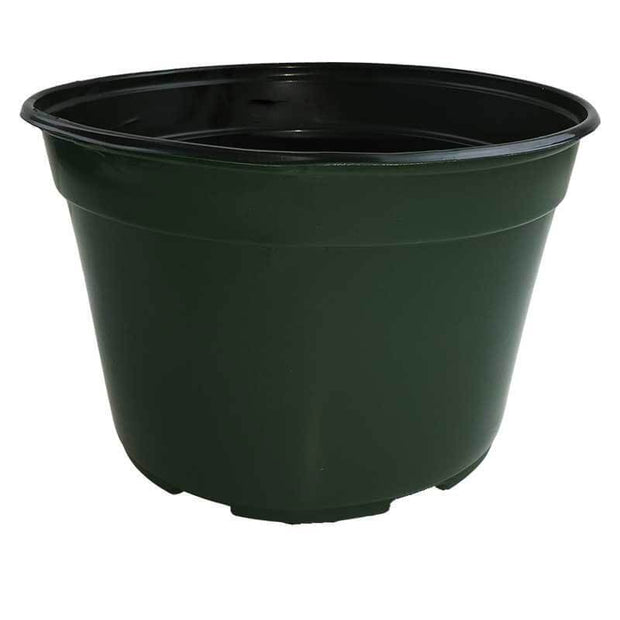 "9"" Green Plastic Pot"