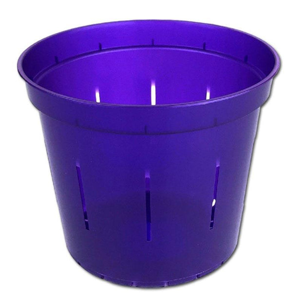 Purple Amethyst Slotted Violet Pot - 6 Inch - Slot-Pots