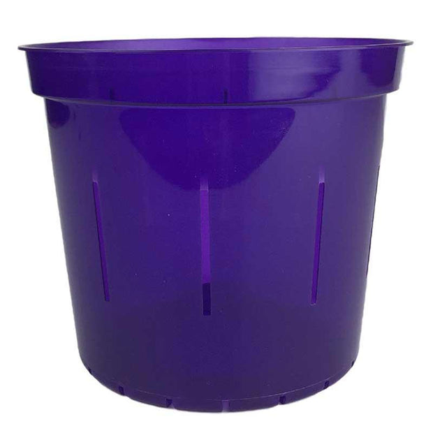 Purple Amethyst Slotted Violet Pot - Slot-Pots