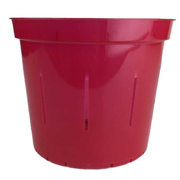 Ruby Red Slotted Violet Pot - Slot-Pots