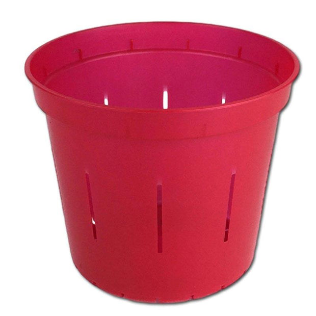 Ruby Red Slotted Violet Pot - 6 Inch - Slot-Pots